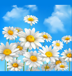 Daisies On Blue Sky vector image