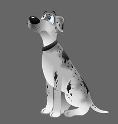 dog Great Dane white sitting vector image vector image