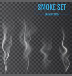 delicate white cigarette smoke waves on vector image