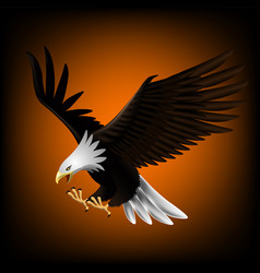 Eagle flying down and catching prey eps 10 vector