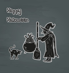 Old witch cat and cauldron vector