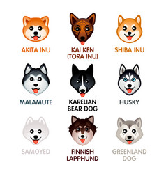 cute dog icons set ii vector image