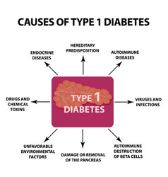 the causes of diabetes type 1 infographics vector image