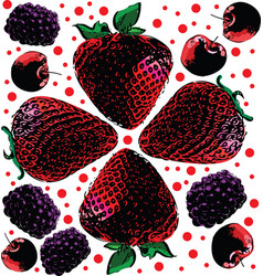 berries seamless hand drawn pattern vector image