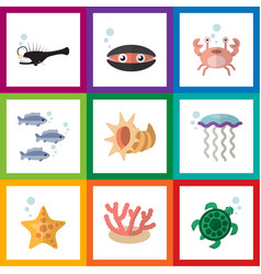 Flat icon nature set of medusa algae fish and vector