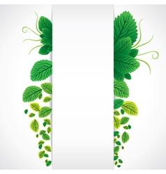 green leaf banner vector image