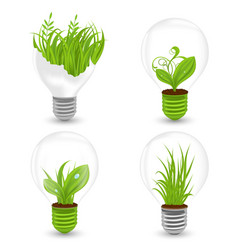 Set of light bulbs with plant and leaves growing vector