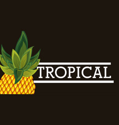 tropical pineapple fruit card vector image