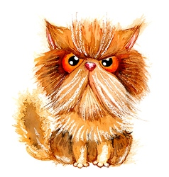 Hand drawn watercolor grumpy persian cat vector image vector image