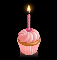pink fairy cake cupcake with birthday candle vector image