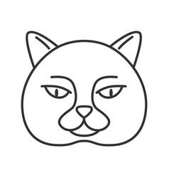 British shorthair cat linear icon vector