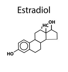 chemical molecular formula the hormone estradiol vector image