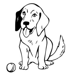 drawing dog with ball vector image