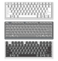 flat design of computer keyboards vector image