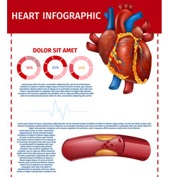 Infographic realistic heart and blocked fat vessel vector