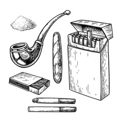 tobacco smoking drawing set cigarette pack vector image
