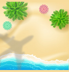top down view to sea shore and shadow aeroplane vector image