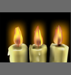 tree burning candles vector image