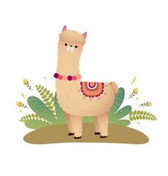 A cartoon alpaca on a ground vector
