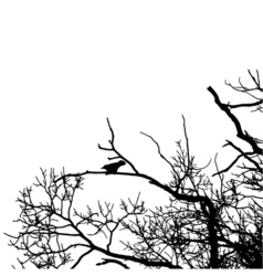 Black raven silhouette of a bare tree vector