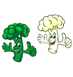 Broccoli and cauliflower vector