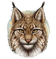 Lynx realistic hand-drawn color portrait vector