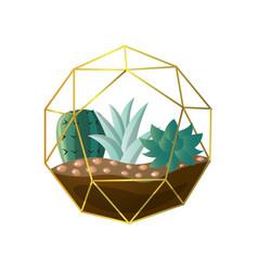 Round geometric terrarium with green succulent vector
