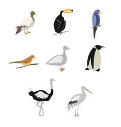set cartoon birds vector image