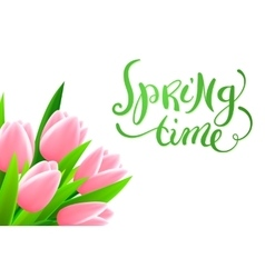 Spring time with flowers vector image