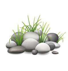 Stones and green grass vector