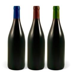 Wine bottles vector