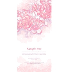 Romantic background with pink chrysanthemum vector image