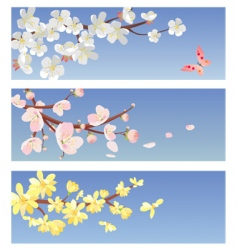 blossoming trees vector image