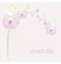 orchid background vector image