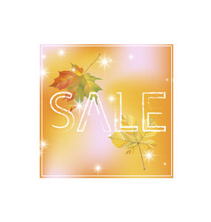 autumn discount price tag sale sign with maple vector image