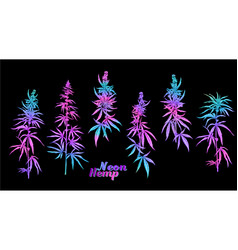 can plant neon set vector image
