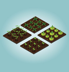 garden in spring isometric icon set vector image
