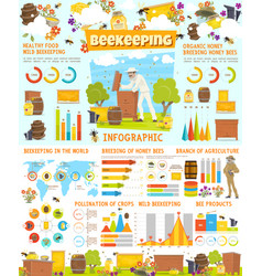 Infographic of beekeeping statistics with charts vector