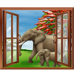 Looking out window at elephant vector