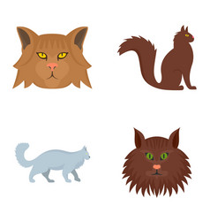 maine coon cat profile icons set flat style vector image