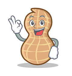 Okay peanut character cartoon style vector