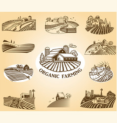 Organic farming design elements vector