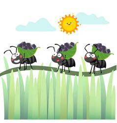 A cartoon colony black ants vector