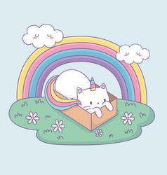 cute cat with rainbow tail in carton box kawaii vector image