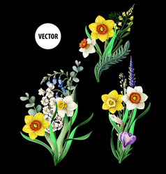 daffoldils bouquets with wild flowers vector image