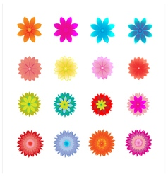 set flower vector image