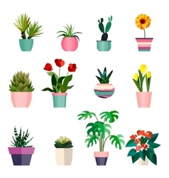 Set of green house plants in pots Leaf and vector image