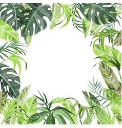 Tropical jungle plants background vector