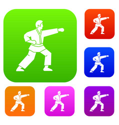 aikido fighter set collection vector image