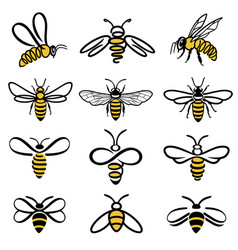 Bee icons vector